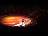 цирк в Воронеже